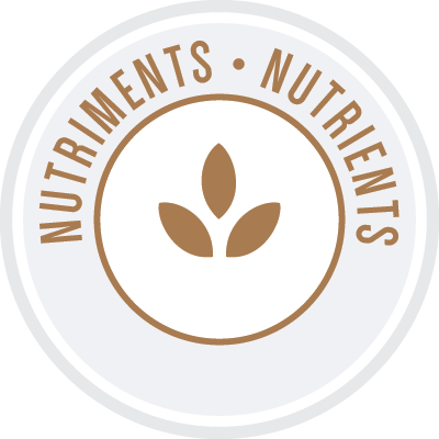 Orijin_graines_nutriments-icon