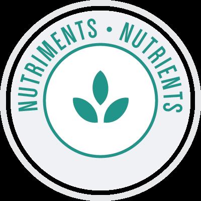 Orijin_farine_nutriments-icon